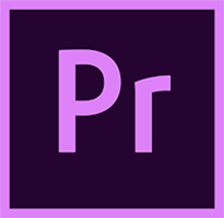 Adobe Premiere Pro for enterprise Subscription New GOVERNMENT ISOLATED FEATURE RESTRICTED LICENSE